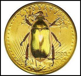 Gold Bugs; Bullish reversal pattern at support?